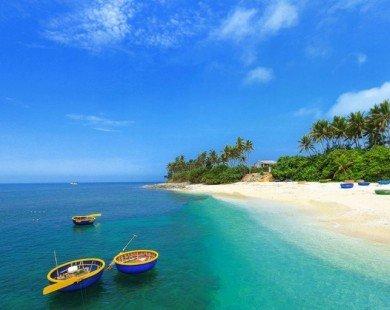 Sắp có tàu siêu tốc ra đảo Lý Sơn chỉ 25 phút