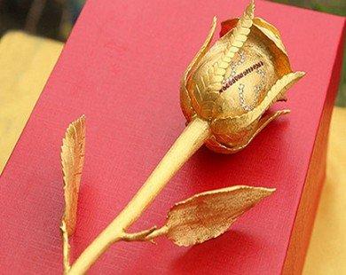 """Quà tặng 8.3: Hoa hồng """"nội y"""" lạ mắt"""