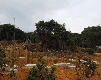 Đà Nẵng: Nếu không đúng quy hoạch, phải đập bỏ dự án tại Sơn Trà