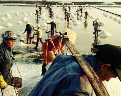 Mãn nhãn với các bức ảnh chụp từ điện thoại của nhiếp ảnh gia Hải Thanh