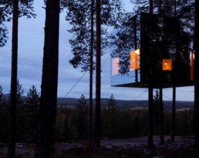 9 nhà nghỉ trên cây độc và dị nhất hành tinh