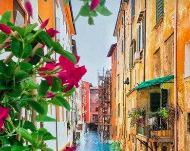 17 điểm du lịch hoàn hảo cho người thích lang thang một mình
