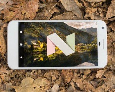 Google chi 880 triệu USD để sản xuất màn hình OLED cho Pixel 2