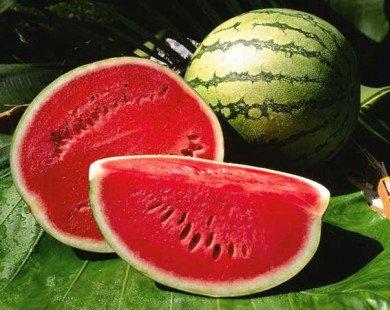 Người bệnh tiểu đường có nên ăn dưa hấu?