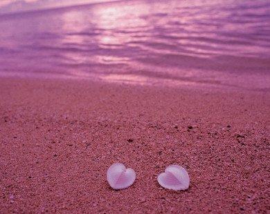 Có phải yêu nhau càng lâu thì tình yêu càng nhạt?