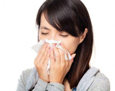 Viêm mũi dị ứng: đến kỳ lại tới