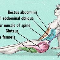 Động tác tập giảm mỡ bụng tại chỗ hiệu quả
