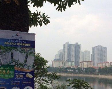 Quảng cáo treo cây xanh, cột điện sẽ bị phạt theo luật mới