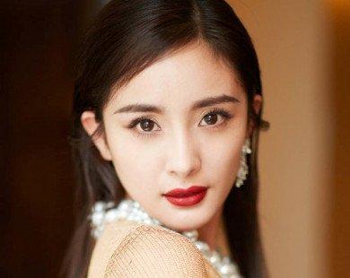 Dương Mịch tỏa sáng trong lần đầu tham dự đại tiệc thời trang Met Gala