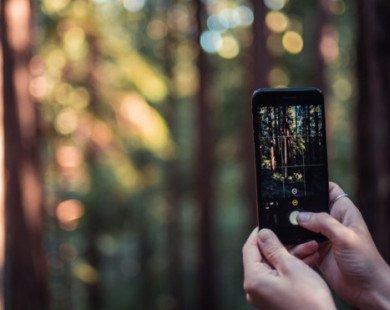 Nhân viên cũ của Apple tạo ra ứng dụng tối ưu hóa máy ảnh iPhone