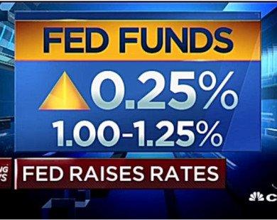 Fed tăng lãi suất bất chấp lạm phát giảm, thu hẹp dự trữ trái phiếu 4,5 nghìn tỷ USD