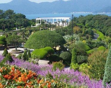 Lạc lối giữa vẻ đẹp như mơ của Vườn địa đàng Oedo-Botania