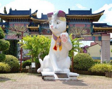 Ghé thăm thành phố Mèo – Kuching ở Malaysia
