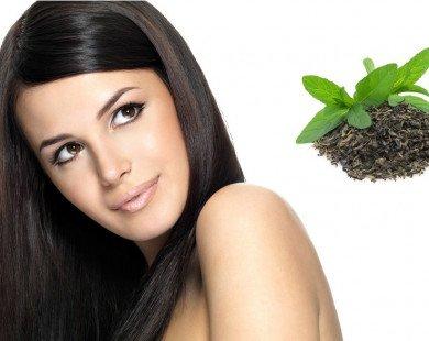 Mẹo hay giúp mái tóc óng ả và mềm mượt nhờ trà xanh
