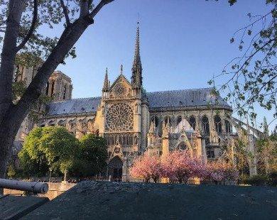 14 bức ảnh tuyệt đẹp khiến ai cũng phải si mê Paris
