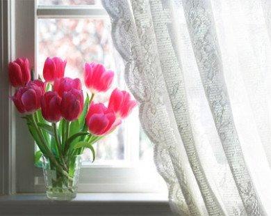 Những mẹo đơn giản mang lại ánh sáng tự nhiên cho ngôi nhà