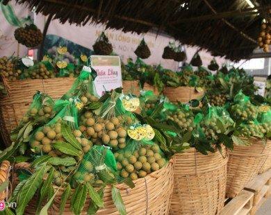 Mang 32 tấn nhãn lồng Hưng Yên ra bán ở Hà Nội