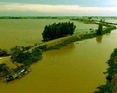 Đầu tư gần 1.200 tỷ đồng xây đê bao sông Mang Thít