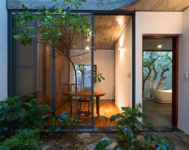 Căn nhà với vườn cây xếp tầng độc đáo tại Nghệ An