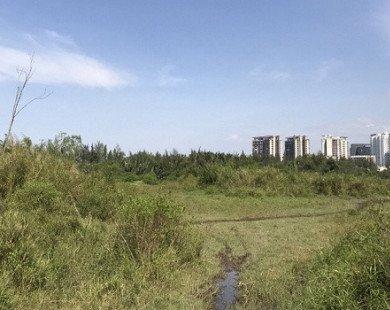 Xử phạt các trường hợp lấn chiếm đất tại dự án của Quốc Cường Gia Lai