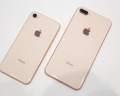 'Apple hút máu, iPhone X chỉ dành cho nhà giàu'