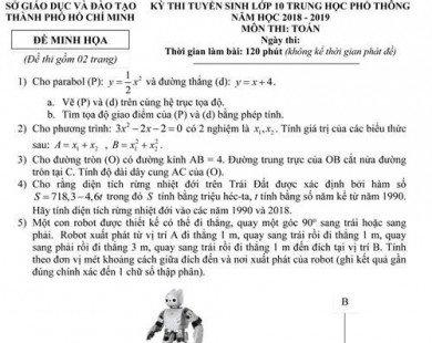 Lời giải đề thi minh họa vào lớp 10 ở TP.HCM