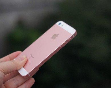 Quên iPhone X đi, smartphone Apple tốt nhất có giá chỉ 350 USD