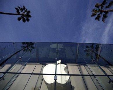 Châu Âu quyết đòi 15 tỷ USD của Apple