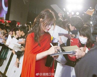Đẳng cấp Triệu Vy: xuất hiện lộng lẫy tại LHP quốc tế lập tức đẩy Nhiệt Ba khỏi top đầu weibo