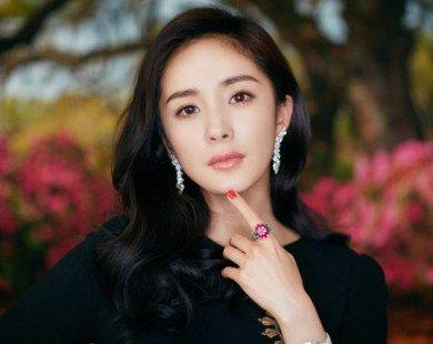 Cư dân mạng chỉ trích Dương Mịch tham công tiếc việc, 3 tháng không về nhà thăm con