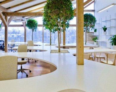 Văn phòng kiểu mới xa trung tâm ngày càng hút khách thuê
