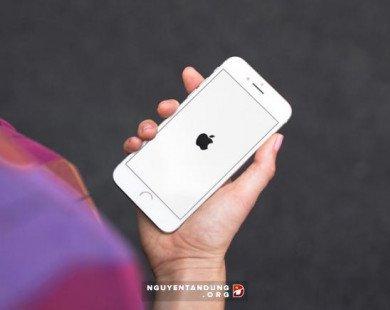 Kiện Apple đòi 1.000 tỷ USD vì làm chậm iPhone cũ