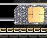 Đại gia bỏ 60 tỷ mua số điện thoại siêu đẹp chín số 6