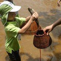 Một ngày làm nông dân ở trang trại đồng quê ngay sát Hà Nội