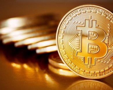 Bitcoin sụt giá gần 9%, xuống dưới mốc 8.000 USD