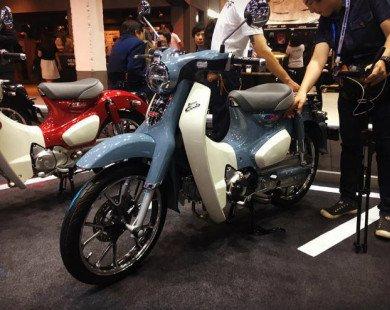 2018 Honda Super Cub C125 giá 65 triệu đồng, đắt ngang SH