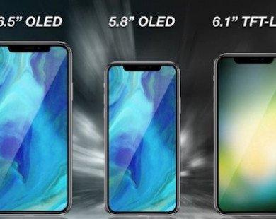 iPhone 2018 sẽ có bản giá rẻ, hỗ trợ hai sim