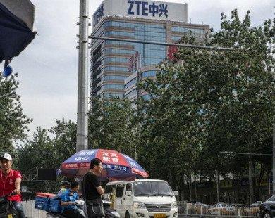 ZTE chấp nhận nộp phạt 1,7 tỷ USD để hoạt động trở lại