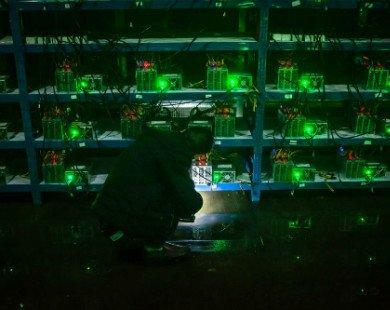 Làn sóng tháo chạy vì lũ của dân đào Bitcoin Trung Quốc