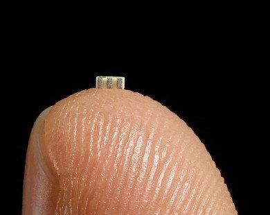 Trung Quốc dùng chip nhỏ bằng hạt gạo để xâm nhập các công ty Mỹ