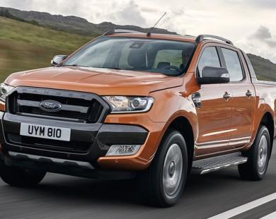 Thị trường xe bán tải sôi động khi phí trước bạ tăng gấp 3