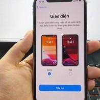Người dùng Việt kêu trời vì iPhone không nhận cuộc gọi khi cài iOS 13