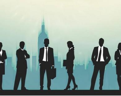 Navigos: Nhân sự cấp càng cao bị giảm lương càng nhiều